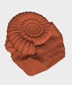 <b>Settings:</b><br>
